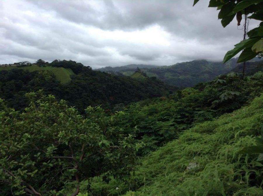 A Vendre Papeete Terrain 2049m2