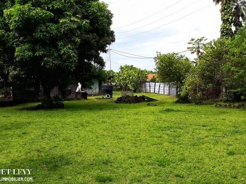 A vendre terrain 1061M2 C/Mont. à Papara