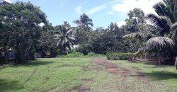 A Vendre terrain de 700M2 C/Mont. à Papeari (Proche Taravao)