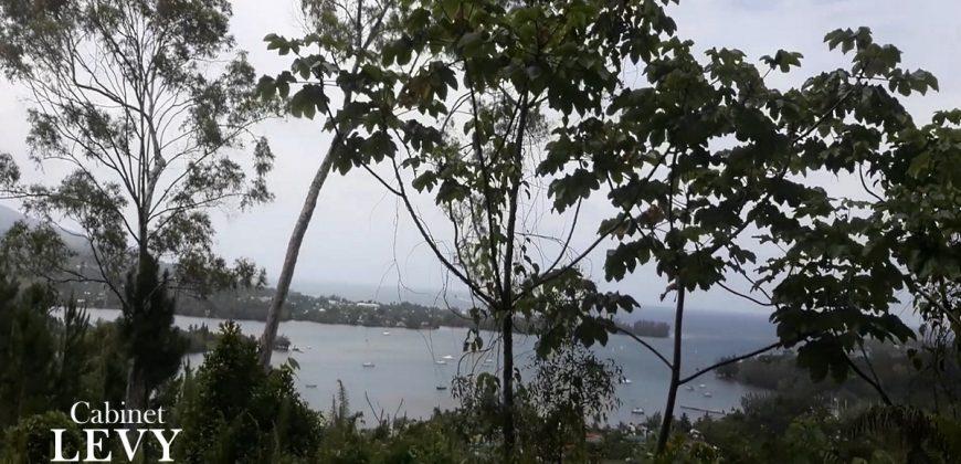 A vendre 9 hectares à Taravao (Spécial investisseur-Promoteur)