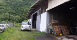A vendre Hangar 550M2/terrain 1457M2 à Papara
