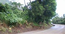 A Vendre Terrain plat de 6 279 m2 C/Mont. à Paopao ,Moorea
