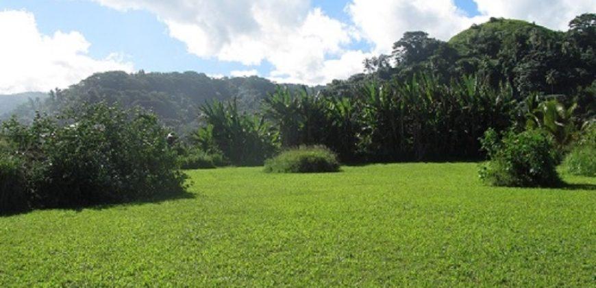 A vendre terrain 1115M2 à Papara (Belle Vue montagne)