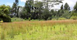 A vendre terrain 1444M2 au Plateau de Rauvau,à Afaahiti