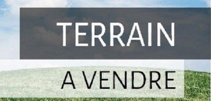A vendre Terrain (Viabilisé) de 440 m2 à PAEA