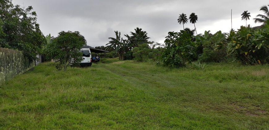 A vendre terrain de 1158m2 ( viabilisé et Mi-clôturé) à Taravao