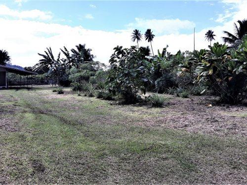 A vendre terrain 1260 m2 Plat et viabilisé à Taravao. (Prêt à construire)