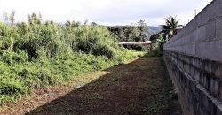 A vendre terrain de 600M2 à Taravao – Centre