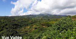 """A vendre terrain """"plat-Clos-Viabilisé"""" de 2347m2 à Toahotu (Belle vue vallée)"""