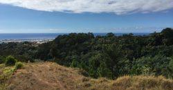 A Vendre Papeete Magnifique Terrain 3500m2 Domaine privé