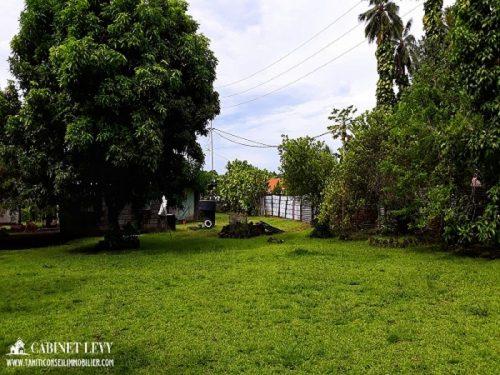 """A vendre terrain """"viabilisé"""" de 1061 M2 (Avec Vielle maison) à Papara"""