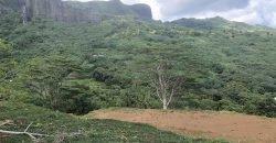 Terrain en hauteur avec vue lagon et montagne à MAHAREPA