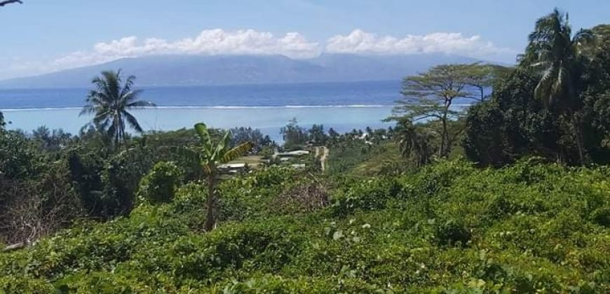 A VENDRE TERRAIN DE 2 068m2 C/MONT. AFAREAITU à MOOREA (VUE SUR TAHITI)