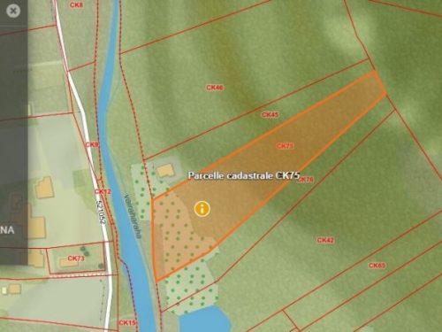 A vendre terrain agricole de 9327M2 à Mataiea