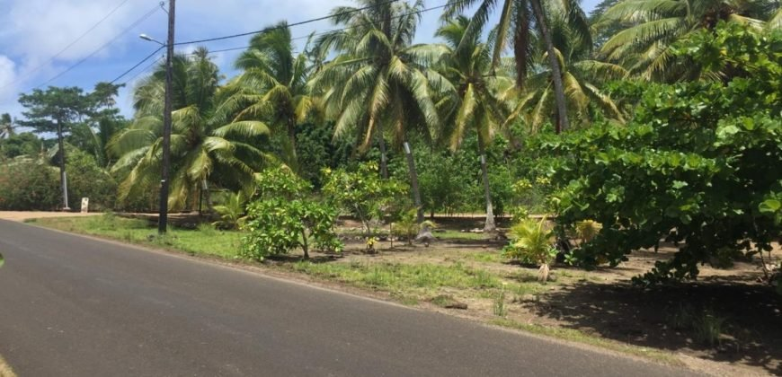 A vendre un terrain de 3,6 Hectares C/Mont. à Tahaa. (Vue Bora Bora)