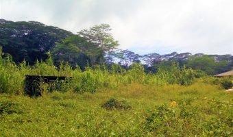 A VENDRE TERRAIN DE 750m2 (QUARTIER CALME) AFAAHITI