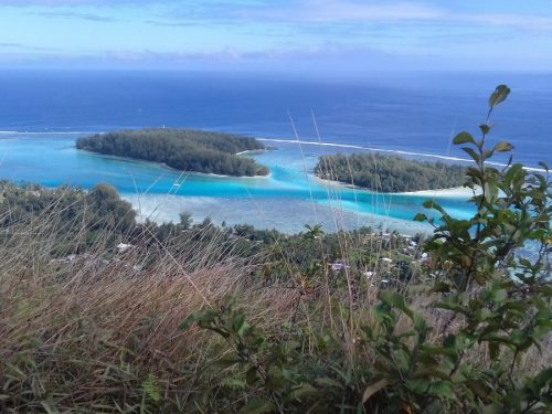 Land of 36800m2 Located in a Private Island in Moorea