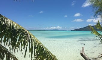 Bora Bora – PLusieurs Appartements à Vendre
