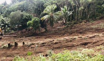 Terrain de 6000 m2 – Punaauia vue Moorea